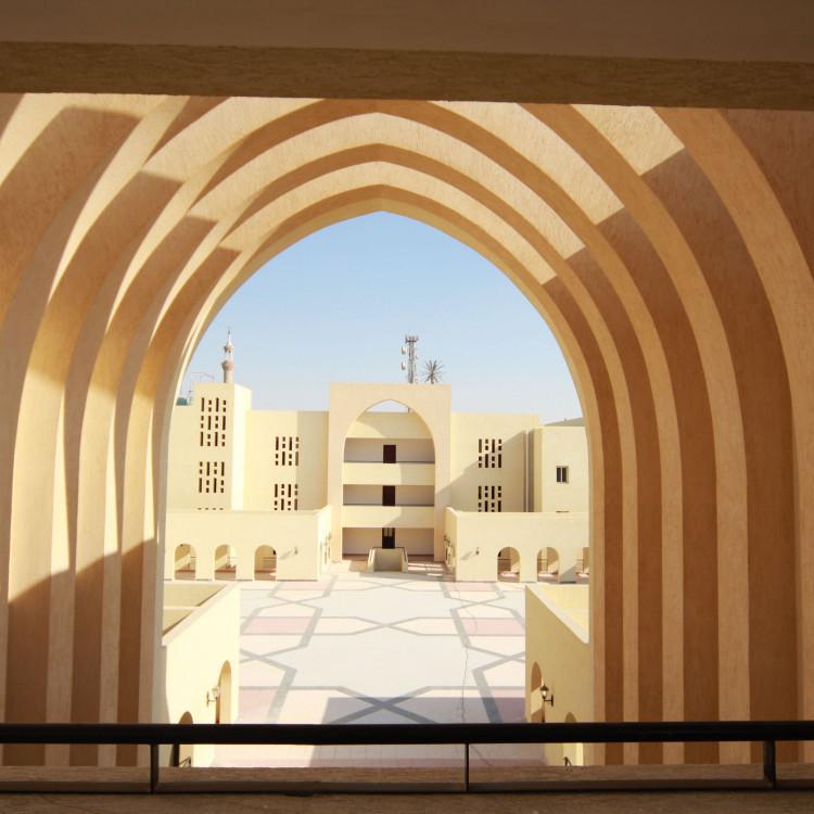 Shouba Institute, Egypt